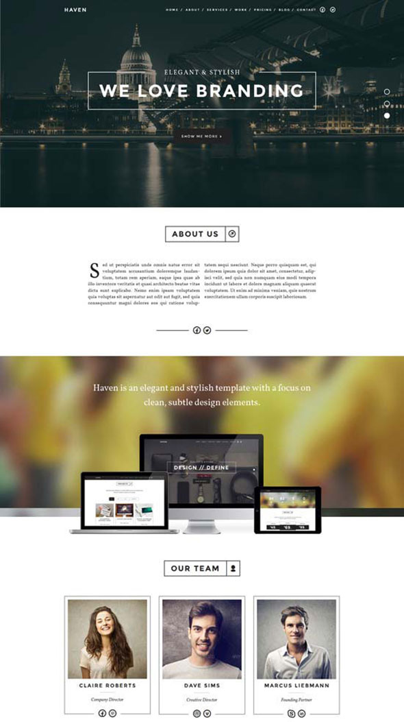 single-page-wordpress-themes20