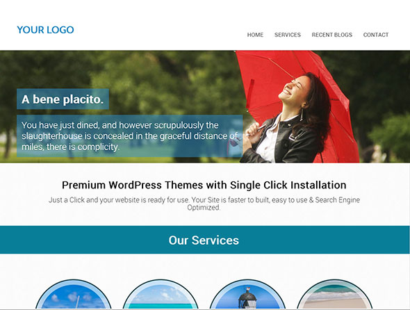 single-page-wordpress-themes4
