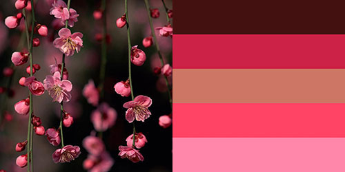 spring-palette10