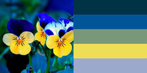 spring-palette11