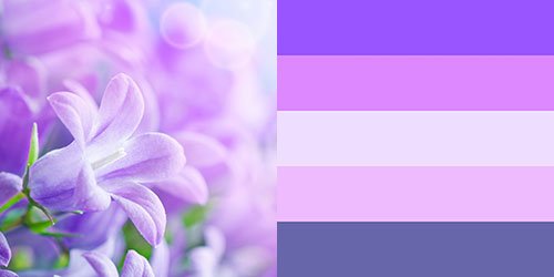spring-palette12