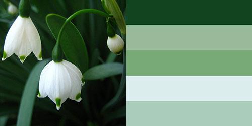 spring-palette14