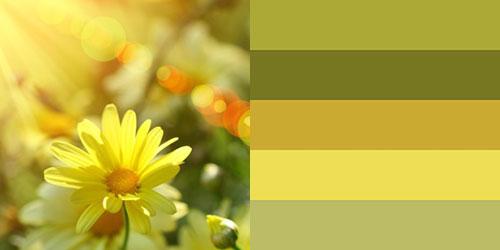 spring-palette15