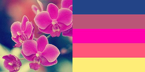 spring-palette17