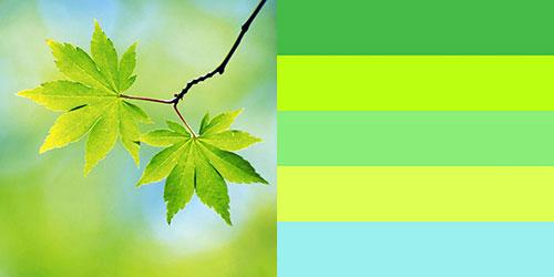 spring-palette2