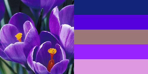spring-palette21