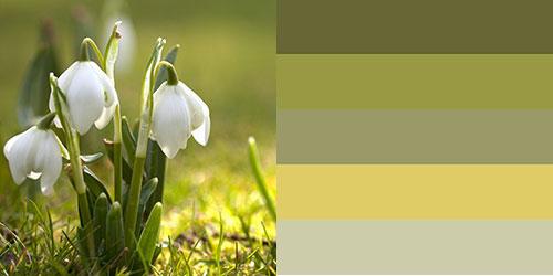 spring-palette4