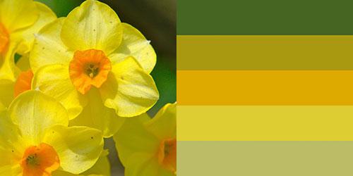 spring-palette5