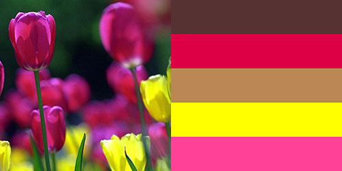 spring-palette6