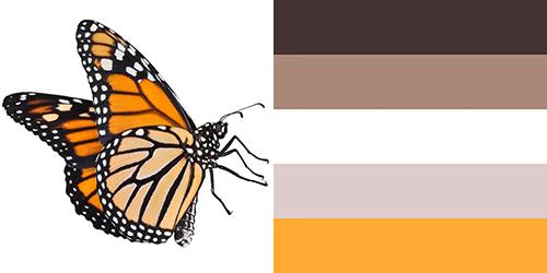 butterfly-palette1