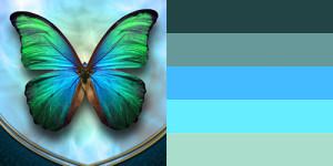 butterfly-palette13