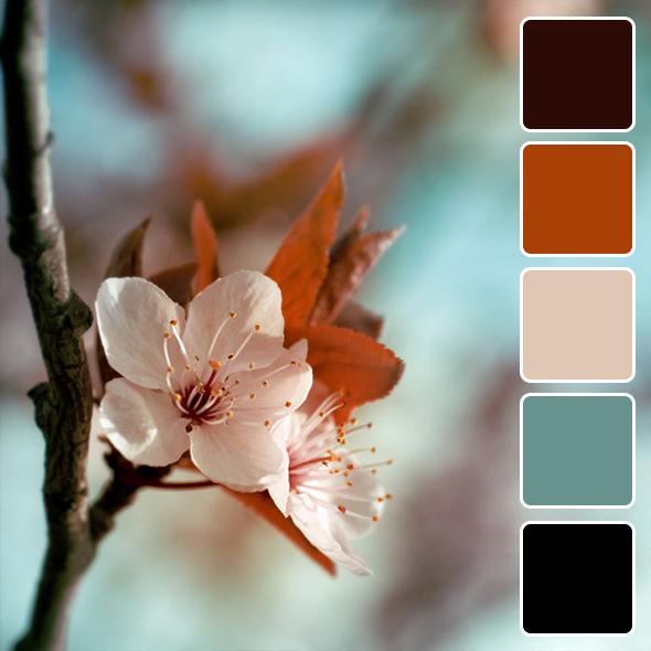 spring-color-pallets11
