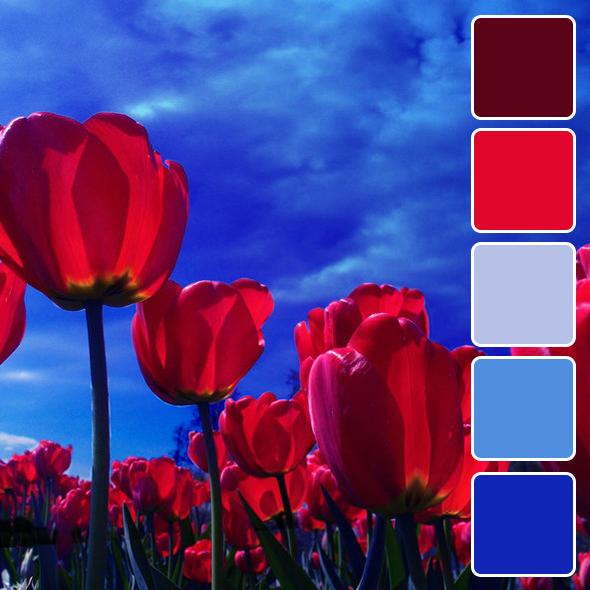 spring-color-pallets12