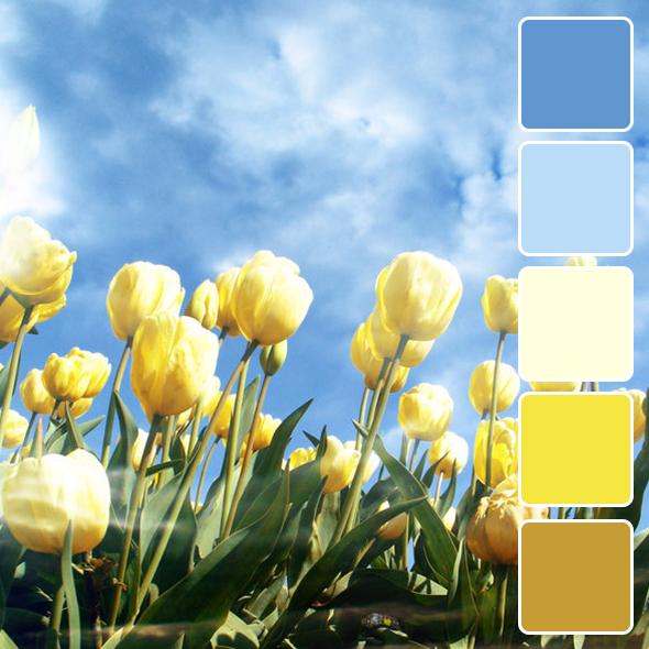 spring-color-pallets13