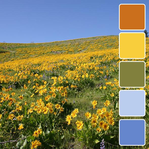 spring-color-pallets15