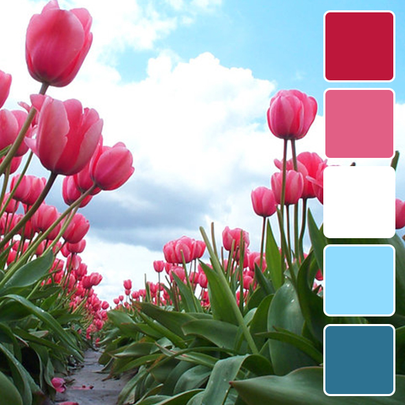 spring-color-pallets17
