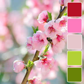 spring-color-pallets2
