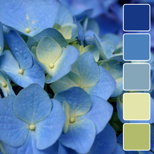 spring-color-pallets20