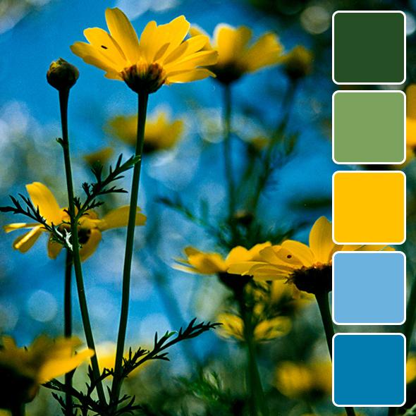 spring-color-pallets7