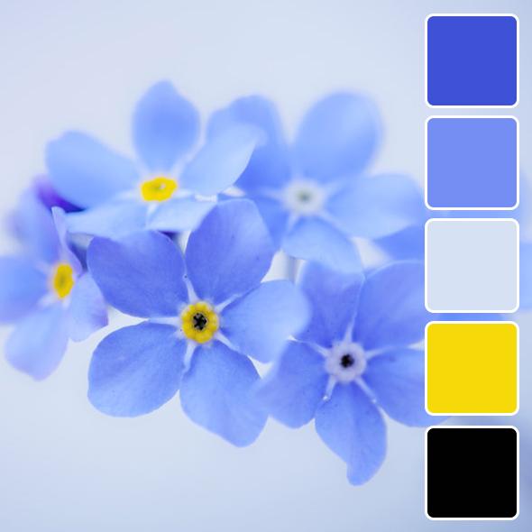 spring-color-pallets8