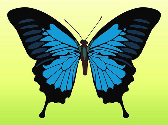 free-vector-butterfly9