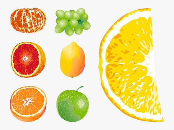 free-vector-fruits11