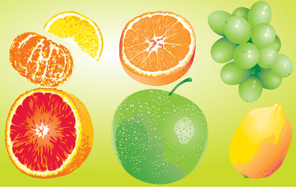 free-vector-fruits19