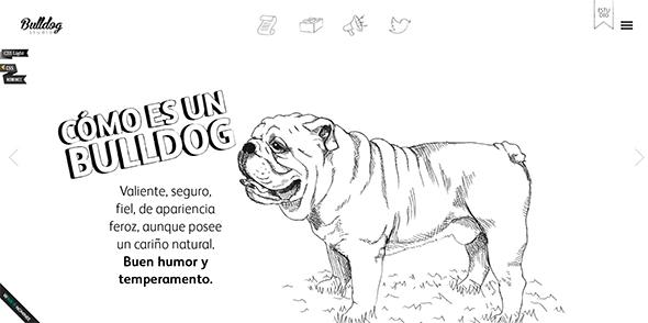 horizontal-layout-websites11
