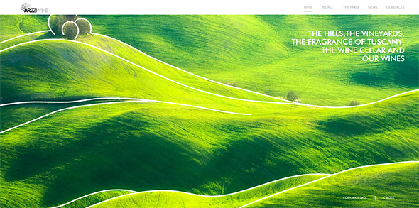 horizontal-layout-websites16
