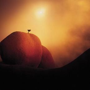 Майкл Фаталі: значення світла в мистецтві фотографії